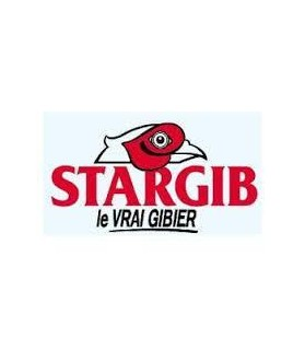 EVIA22060Y-STARGIB