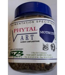 JPHYTART-PHYTAL ART