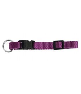 Collier violet Miami 40-55 cm pour Chien
